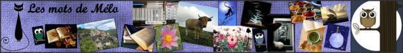 http://bazar-de-la-litterature.cowblog.fr/images/Bannieresliens/bannieremelo.jpg