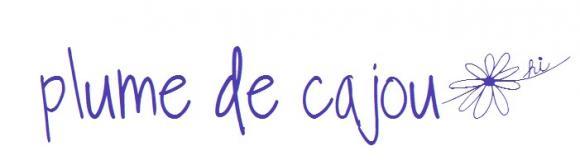 http://bazar-de-la-litterature.cowblog.fr/images/Bannieresliens/plumedecajoujpg.jpg