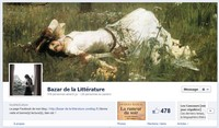 http://bazar-de-la-litterature.cowblog.fr/images/Divers1/FACEBOOKBAZARDELALITTERATURE.jpg