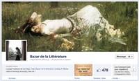 http://bazar-de-la-litterature.cowblog.fr/images/Divers1/FACEBOOKBAZARDELALITTERATURE.jpg
