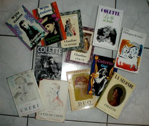 http://bazar-de-la-litterature.cowblog.fr/images/LeQuinzeLitteraire/Colettedansmabibliotheque.jpg
